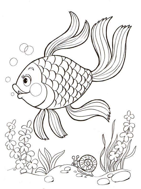 Раскраска золотая рыбка распечатать
